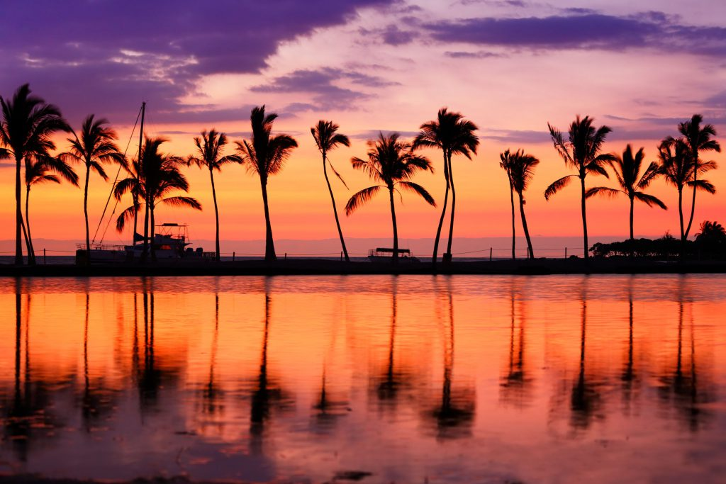 Ocean and palm trees in Hawaii at sunset