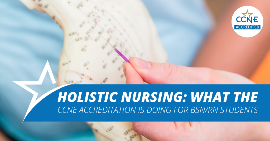 Ameritech's holistic nursing program is CCNE accredited. What does this mean?