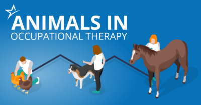 Occupational therapy makes use of a variety of methods. See how that even includes pets, service dogs, and other therapy animals.