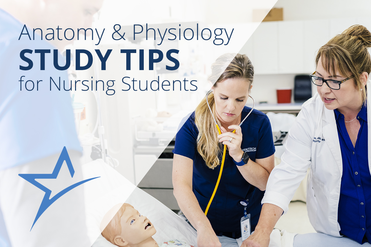 Anatomy and Physiology Study Tips for Nursing Students | Ameritech